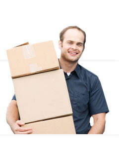 Image of Removal Services